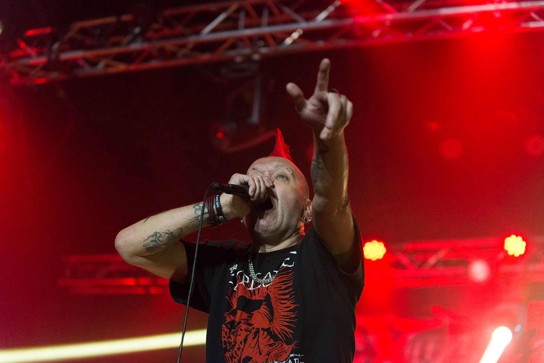 ssThe Exploited  -  6 Junio 2019
